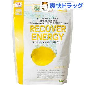 ファインラボ リカバーエネルギー(1kg)【ファインラボ】