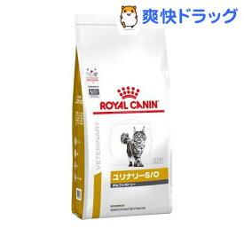 ロイヤルカナン 食事療法食 猫用 ユリナリー S/O オルファクトリー(500g)【ロイヤルカナン療法食】