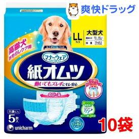 マナーウェア ペット用紙オムツ LLサイズ(5枚入*10袋)【マナーウェア】