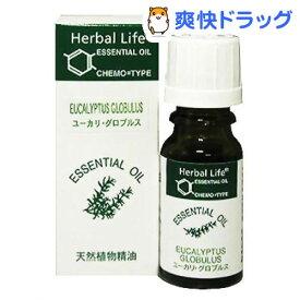 エッセンシャルオイル ユーカリ・グロブルス(10mL)【生活の木 エッセンシャルオイル】