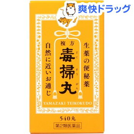 【第2類医薬品】複方毒掃丸(540丸)