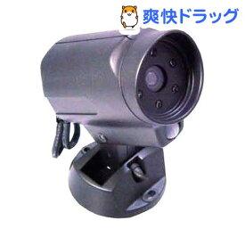 防犯ダミーカメラ DM-90(1コ入)