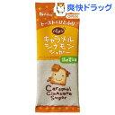 ハウス キャラメルシナモンシュガー 詰め替え用(24g)