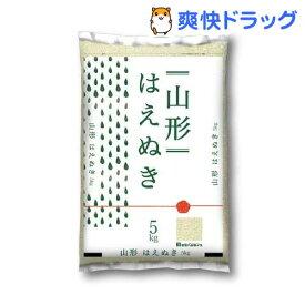 令和元年産 山形県産はえぬき(5kg)[米]