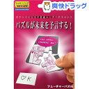 【おススメ】フューチャーパズル(1セット)