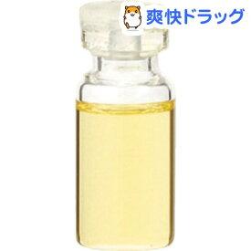 エッセンシャルオイル キャロットシード(3mL)【生活の木 エッセンシャルオイル】