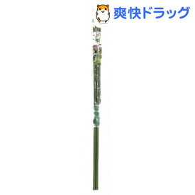 緑のカーテン 3m伸縮ワイド800 ダークグリーン(1コ入)【DAIM(ダイム)】