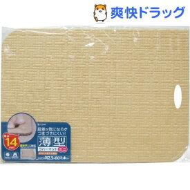 お風呂マット 薄型ラバーマット ミニ ベージュ(1コ入)