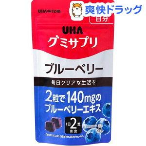 グミサプリ ブルーベリー 20日分(40粒)【グミサプリ】