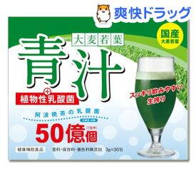 バイオ科学 大麦若葉青汁+植物性乳酸菌(90g(3g*30包))【バイオ科学】