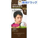 ルシード ワンプッシュケアカラー 6 ダークブラウン(50g+50g)【ルシード(LUCIDO)】