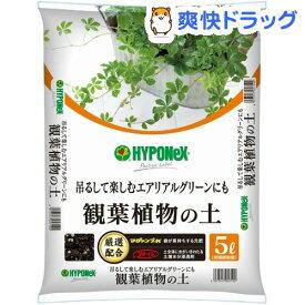 ハイポネックス 観葉植物の土(5L)【ハイポネックス】