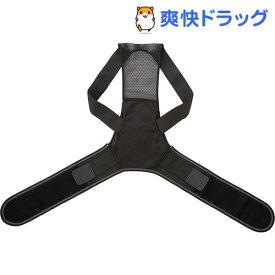 ドクタープロ グイッと伸びる背筋ベルト L(1枚入)【ドクタープロ(ニーズ)】