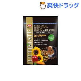 エイト イン ワン アルティメイト モルモット専用ミックスフード(1kg)【エイト イン ワン(8in1)】
