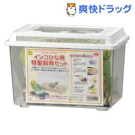 インコひな用 特製飼育セット(1セット)