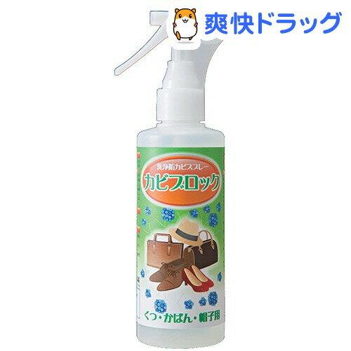 カビブロック 洗浄防カビスプレー くつ・かばん・帽子用(200mL)