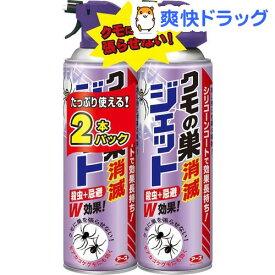 【企画品】クモの巣消滅ジェット(450ml*2本入)【アース】