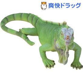 べニーズレプタイル イグアナ グリーン QY-157(1個)