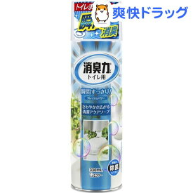 トイレの消臭力スプレー 消臭芳香剤 トイレ用 アクアソープの香り(330mL)【消臭力】