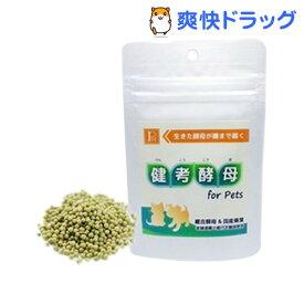 PN 健考酵母 for Pets(45g)【PN(ペットニーム)】