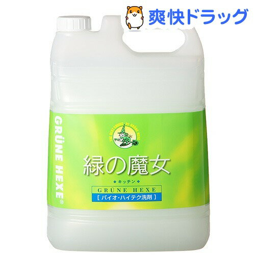 緑の魔女 キッチン(5L)【rdkai_02】【緑の魔女】