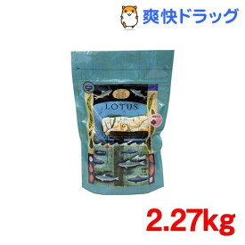 グレインフリーフィッシュレシピ 小粒(2.27kg)[ドッグフード]