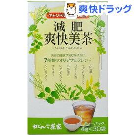 がんこ茶家 減肥爽快美茶(4g*30袋入)【がんこ茶家】