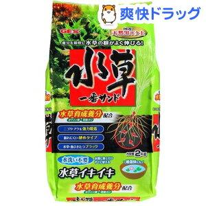 水草 一番サンド(2kg)