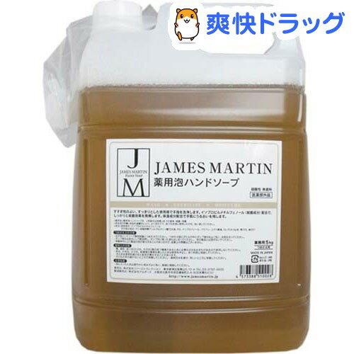 ジェームズマーティン フレッシュサニタイザー 薬用泡ハンドソープ 詰め替え用(5kg)【ジェームズマーティン】