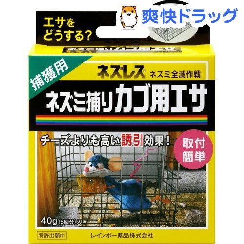 ネズレス ネズミ捕りカゴ用エサ(40g)【ネズレス】
