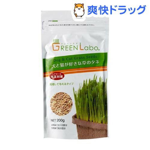 犬と猫が好きな草のタネ(200g)