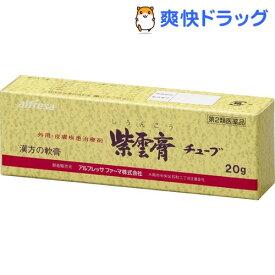【第2類医薬品】紫雲膏チューブ(20g)