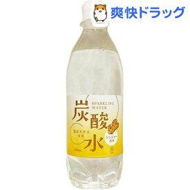 国産 天然水仕込みの炭酸水 ジンジャー(500ml*24本)