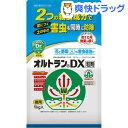 オルトランDX 粒剤 袋入(1kg)【オルトラン】