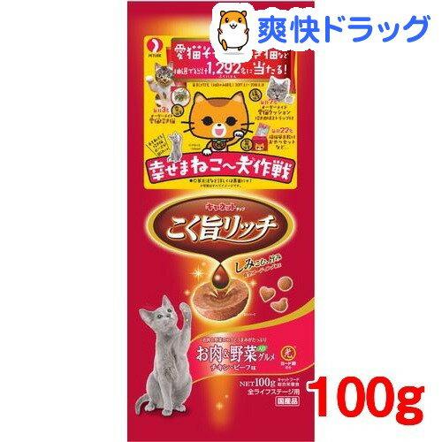 キャネットチップ こく旨リッチ お肉&野菜入りグルメ(100g)【キャネット】