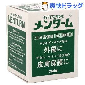 【第3類医薬品】近江兄弟社 メンターム(40g)【メンターム】
