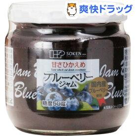 創健社 国内産ブルーベリージャム(200g)【創健社】