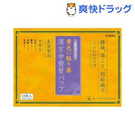【第2類医薬品】漢方中黄膏パップ(12枚入)