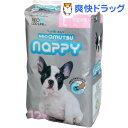 ネオ・オムツ Nappy L(12枚入)【ネオ・ルーライフ(NEO Loo LIFE)】