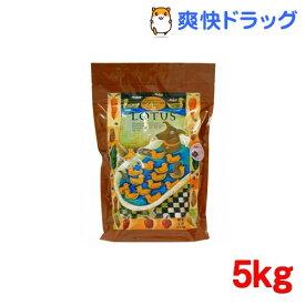 ロータス グレインフリー ダック レシピ 小粒(5kg)【ロータス】[ドッグフード]