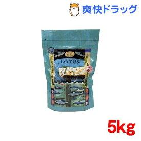 グレインフリーフィッシュレシピ 小粒(5kg)[ドッグフード]