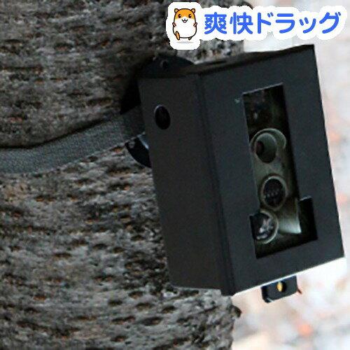 サンコー 自動録画監視カメラ「MPSC-12」用セキュリティーボックス LT5210B3(1コ入)【送料無料】