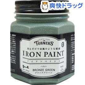 ターナー アイアンペイント ブロンズグリーン IR200015(200ml)【ターナー】