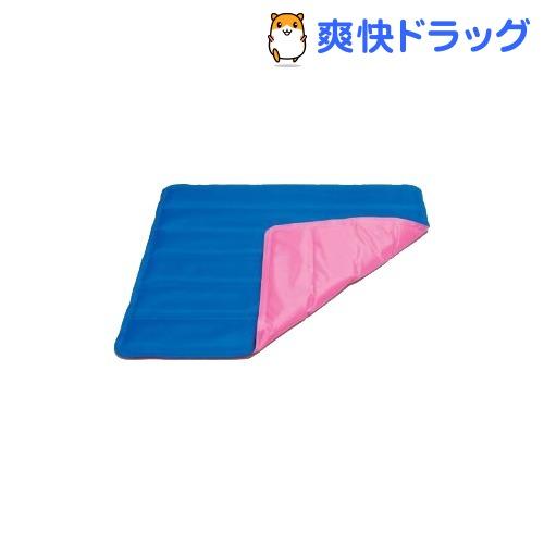 ひんやりざぶとん WJ-513(1コ入)