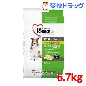 ファーストチョイス 成犬 1歳以上 おいしい低脂肪 中粒 チキン(6.7kg)【1909_pf01】【ファーストチョイス(1ST CHOICE)】[ドッグフード]