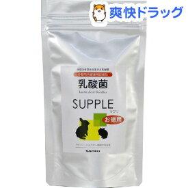 乳酸菌 サプリ(100g)