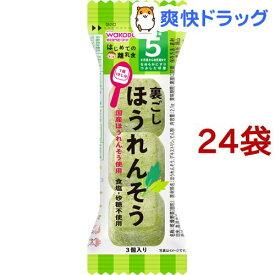 和光堂 はじめての離乳食 裏ごしほうれんそう(2.1g*24袋セット)【はじめての離乳食】