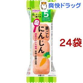 はじめての離乳食 裏ごしにんじん(2.2g*24袋セット)【はじめての離乳食】