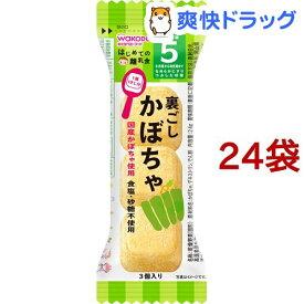 和光堂 はじめての離乳食 裏ごしかぼちゃ(2.4g*24袋セット)【はじめての離乳食】