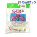 渡辺泰 菊の輪台 白 15cm(10コ入)